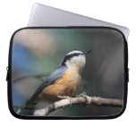Nuthatch Laptop Computer Sleeves