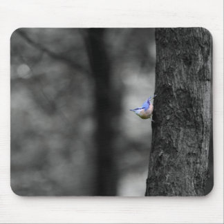 Nuthatch Mouse Pad