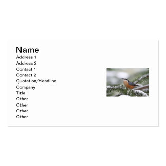 Nuthatch on Snowy Branch in Winter Business Card Templates