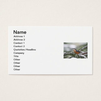 Nuthatch on Snowy Branch in Winter Business Card
