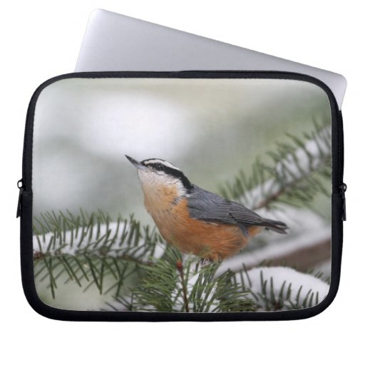 Nuthatch on Snowy Branch in Winter Laptop Sleeves