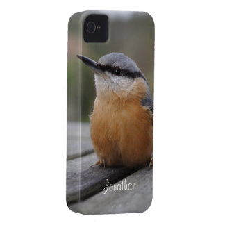 Nuthatch photo Case-Mate iPhone 4 case