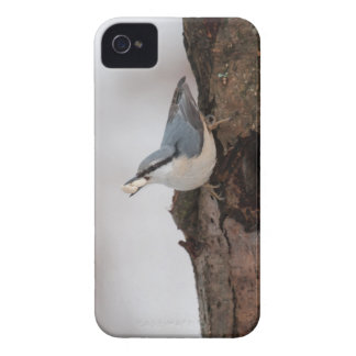 Nuthatch with some nuts iPhone 4 Case-Mate case