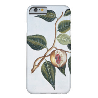 Nutmeg, plate 7, from 'Collection Precieuse et Enl Barely There iPhone 6 Case