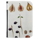 Nutmeg, plate 8, from 'Collection Precieuse et Enl Kindle Keyboard Covers