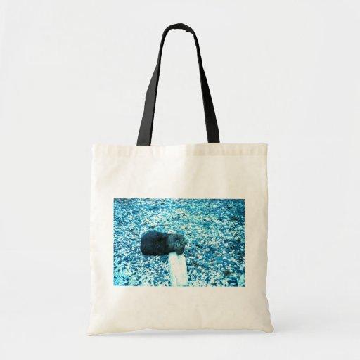 Nutria de mar bolsas