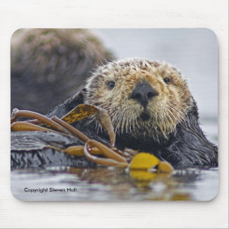 Nutria de mar de California Mousepad