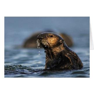 Nutria de mar de California Tarjeta De Felicitación