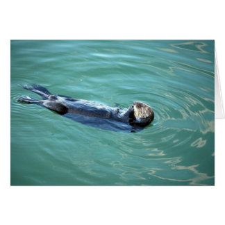 Nutria de mar de la bahía de Monterey Tarjeta De Felicitación