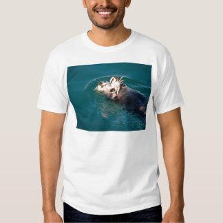 Nutria de mar playeras