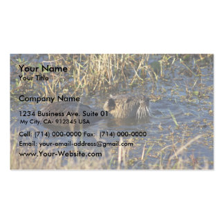 Nutria en agua plantilla de tarjeta personal