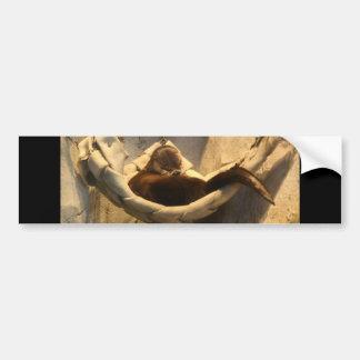 Nutria en hamaca pegatina de parachoque