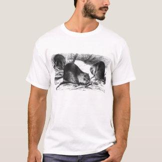Nutria - F.W. Kuhnert T-Shirt