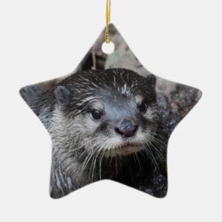 Nutria fangosa ornamento de navidad