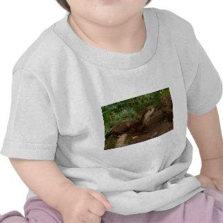 Nutria Camisetas