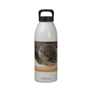 Nutria soñolienta botella de agua reutilizable