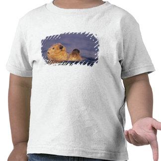 Nutrias de mar lutris 2 del Enhydra Camiseta