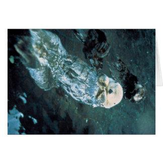 Nutrias de mar meridionales tarjeta de felicitación