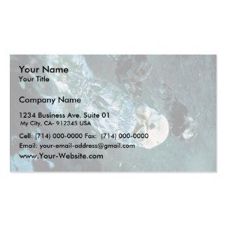 Nutrias de mar meridionales tarjetas de visita