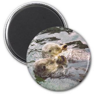 Nutrias de mar que llevan a cabo las manos imán redondo 5 cm