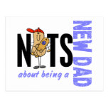 Nuts About Being A New Dad 1 (Blue) Postcard
