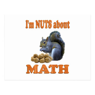 Nuts about Math Postcard
