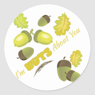 Nuts About You Classic Round Sticker