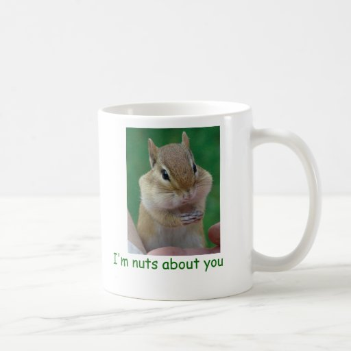 Nuts about you classic white coffee mug