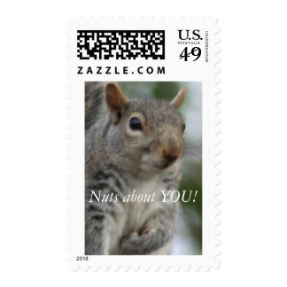 Nuts about YOU! Postage Stamp
