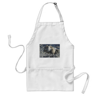 nuts adult apron