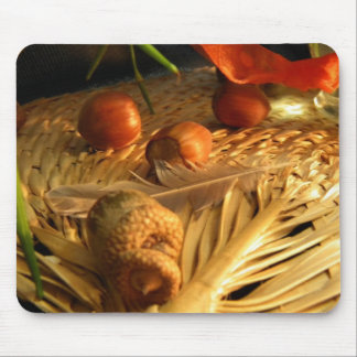 Nuts and Feathers Mouse Pad