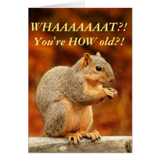 Nuts! Funny Birthday Card