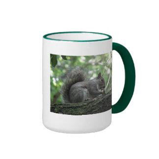 Nutty Squirrel Ringer Coffee Mug