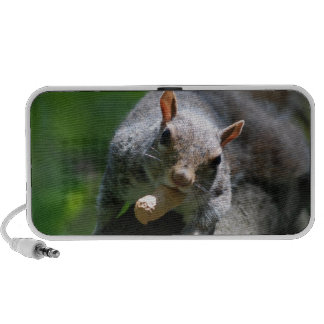 Nutty Squirrel Portable Speakers