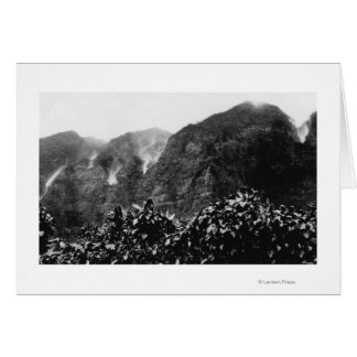 Nuuanu Valley, Hawaii - View of Upside Down Fall Card