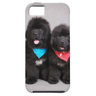 Nuwfie brothers iPhone 5 cover