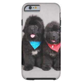 Nuwfie brothers tough iPhone 6 case