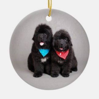 Nuwfie brothers ceramic ornament