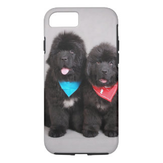 Nuwfie brothers iPhone 8/7 case