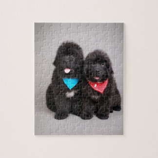 Nuwfie brothers jigsaw puzzle