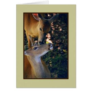 'Nuzzling Deer Duo' Blank Greeting Card