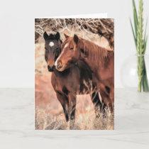 Nuzzling Horses Holiday Card