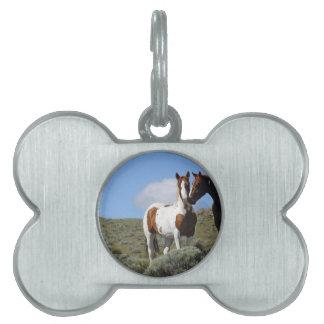 Nuzzling horses pet tag