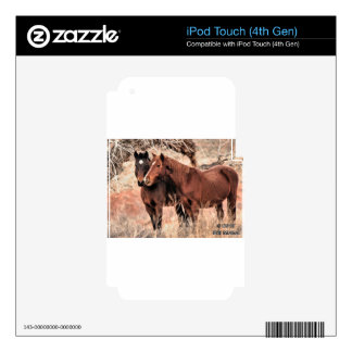 Nuzzling Horses Skin For iPod Touch 4G
