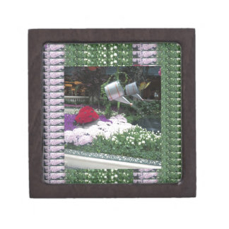 NVN12 navinJOSHI Las Vegas Butterfly Park LadyBugs Premium Keepsake Box