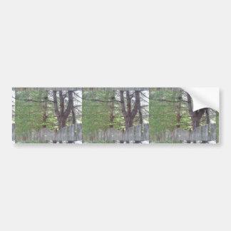 NVN719 American CherryHILL NJ Wild Green Wood FUN Car Bumper Sticker