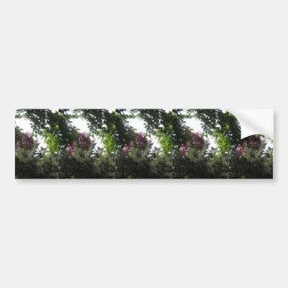 NVN722 American Green Trees All  purpose Cards FUN Car Bumper Sticker
