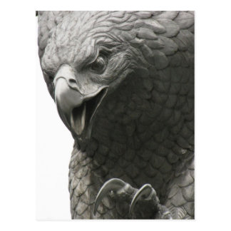 NY Eagle Postcard