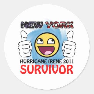 NY Hurricane Irene 2011 Survivor Classic Round Sticker