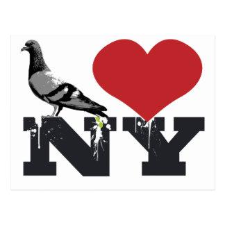 NY Pigeon Postcard
